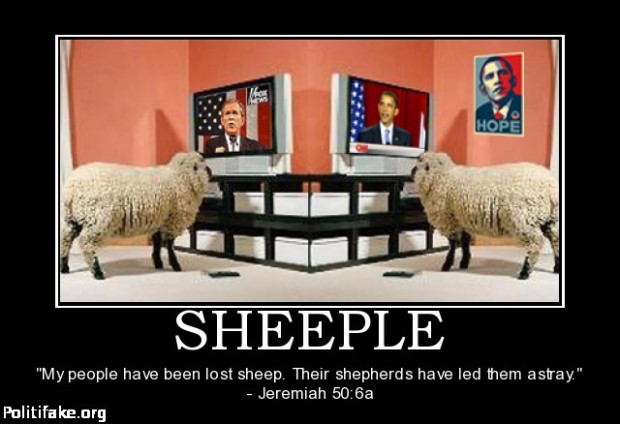 Sheeple fox CNN